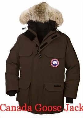 Canada Goose Jacket Cruelty Canada Goose Men's Expedition Parka Brown